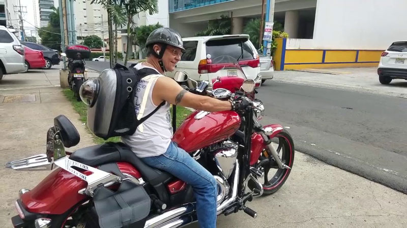 Is Backpack Safe When Riding Motorcycle